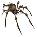 Giant Bone Spider