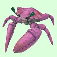 Magenta Crab