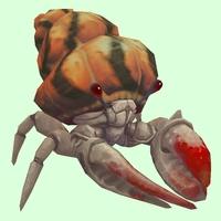Red & White Hermit Crab w/ Orange Shell