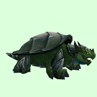 Grey & Dark Green Dragon Turtle