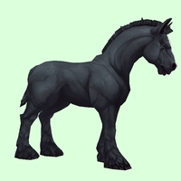 Black Horse w/ Short Mane/Tail