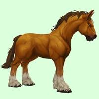 Light Chestnut Horse w/ White Socks