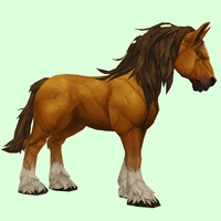 Light Chestnut Horse w/ White Socks & Long Mane