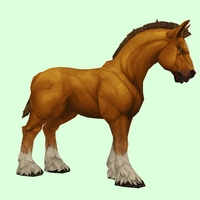 Light Chestnut Horse w/ White Socks & Short Mane/Tail