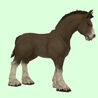 Dark Bay Horse w/ White Socks & Short Mane/Tail