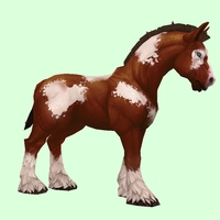 Brown & White Horse w/ Short Mane/Tail