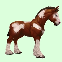 Brown & White Horse w/ Stockings & Short Mane/Tail
