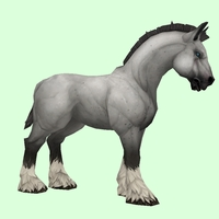 Grey Horse w/ Short Mane/Tail