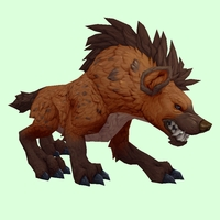 Burnt Orange Hyena