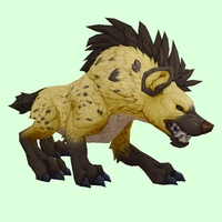 Yellow Hyena