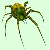 Bright Green Spider