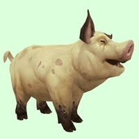 Pale Yellow Pig