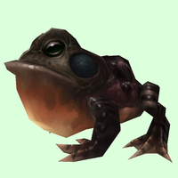 Dark Brown Toad