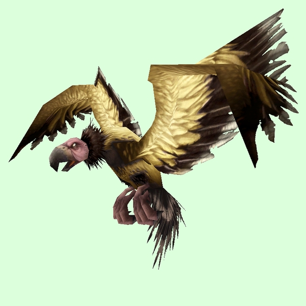 Gold Condor (Bird of Prey) / Gold Condor (Carrion Bird)