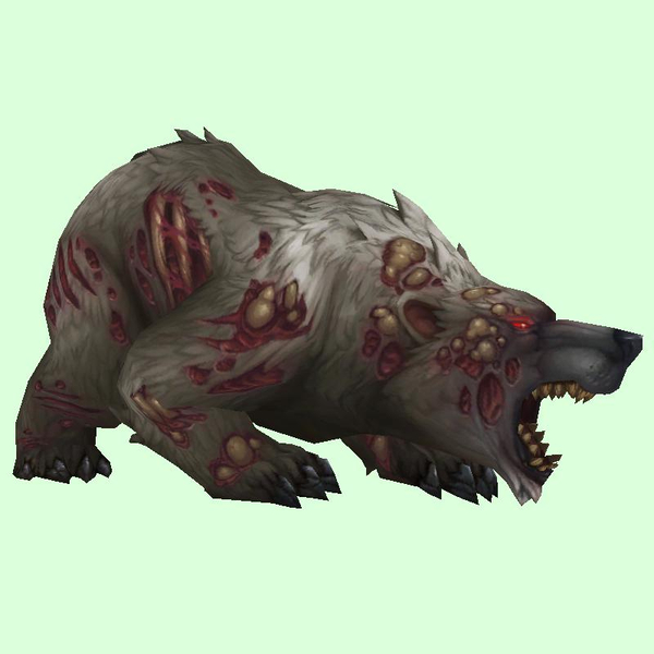 Diseased Grey Bear