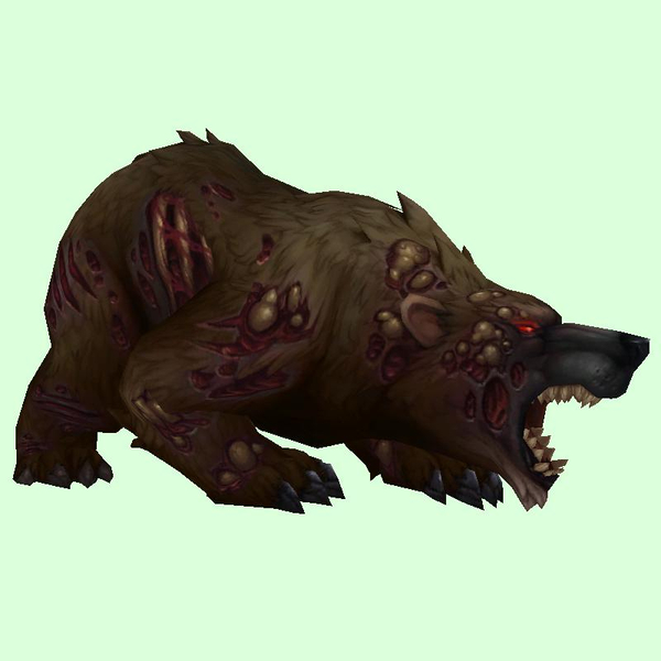 Diseased Dark Brown Bear