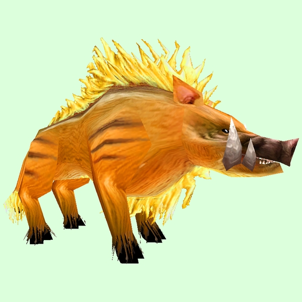 Yellow Boar Pet Look Petopia Hunter Pets In The World Of