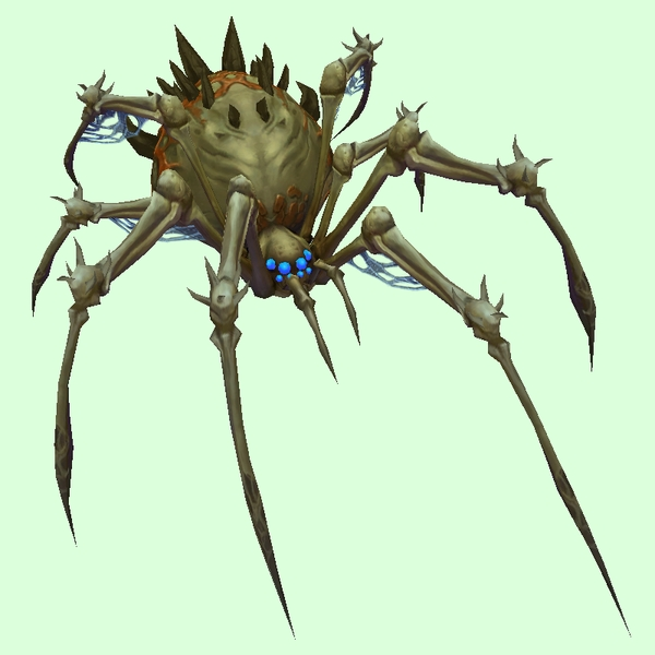 Khaki-Grey Bone Spider