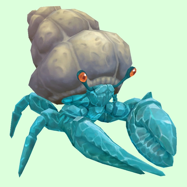 Diamond Hermit Crab