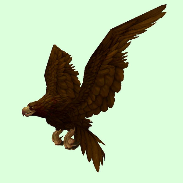 Dark Brown Eagle