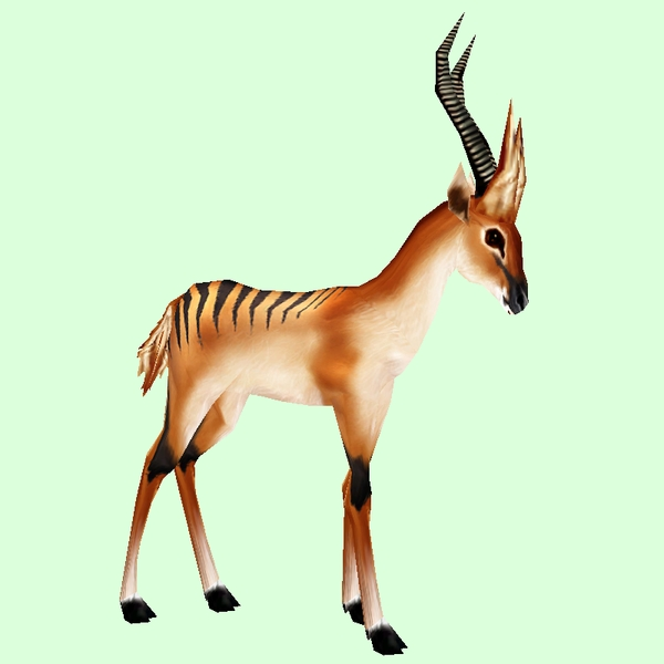 Striped Tan Gazelle