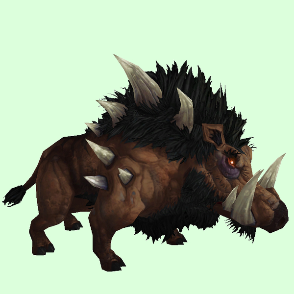 Dark Brown Draenor Boar