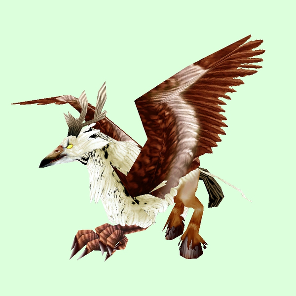 Brown & White Hippogryph