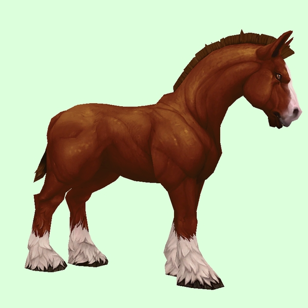 Dark Chestnut Horse w/ Short Mane/Tail