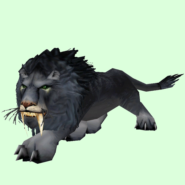 Black Lion Pet Look Petopia Hunter Pets In The World Of Warcraft
