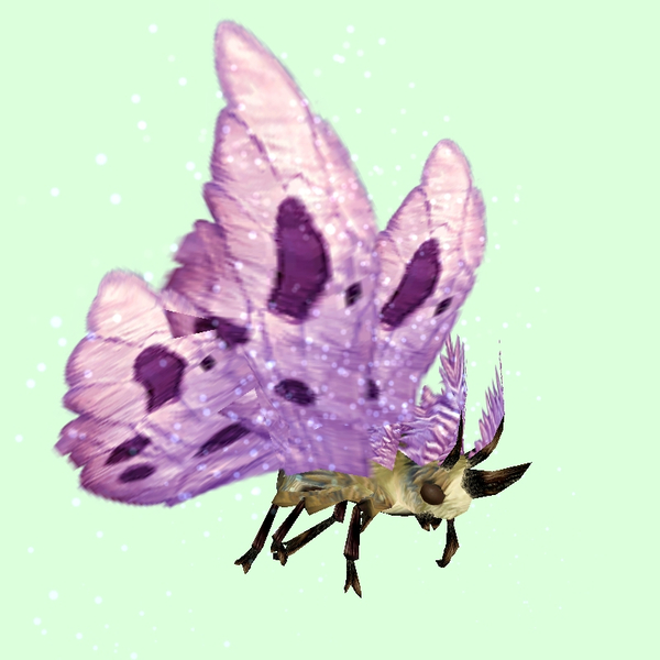 Beige Moth w/ Pink Wings