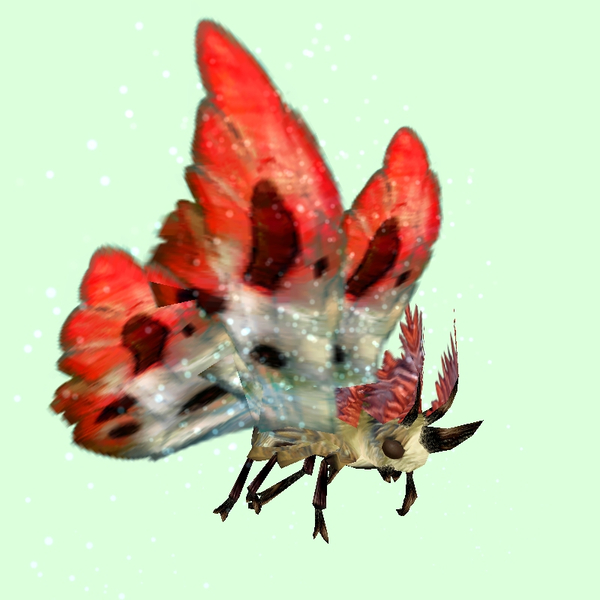 Beige Moth w/ Red & White Wings