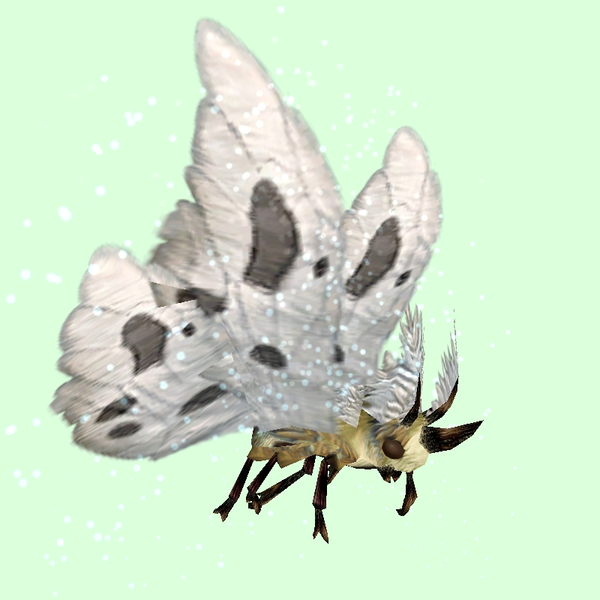 Beige Moth w/ White Wings