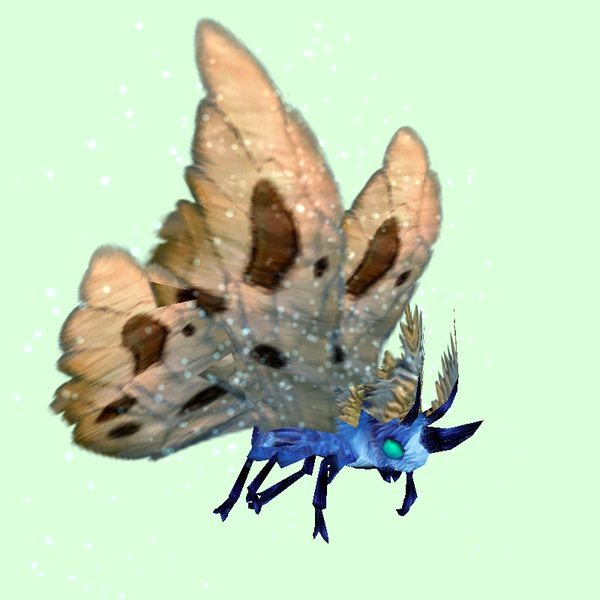 Cyan-Blue Moth w/ Beige Wings