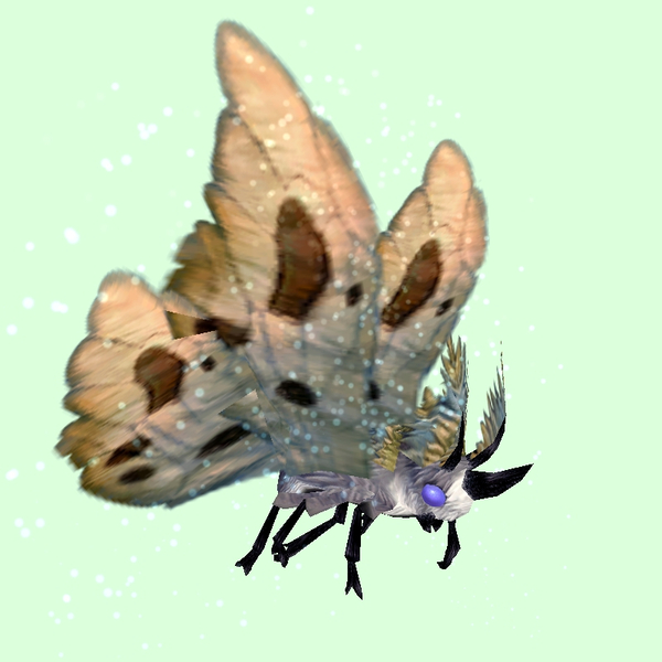 Grey Moth w/ Beige Wings