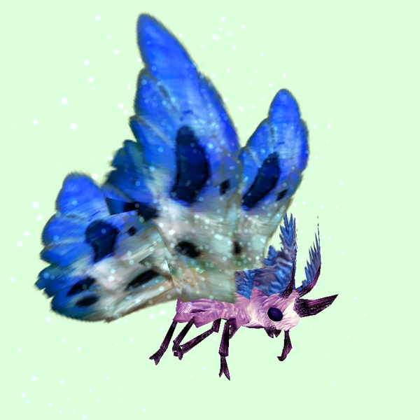 Pink Moth w/ Blue & White Wings