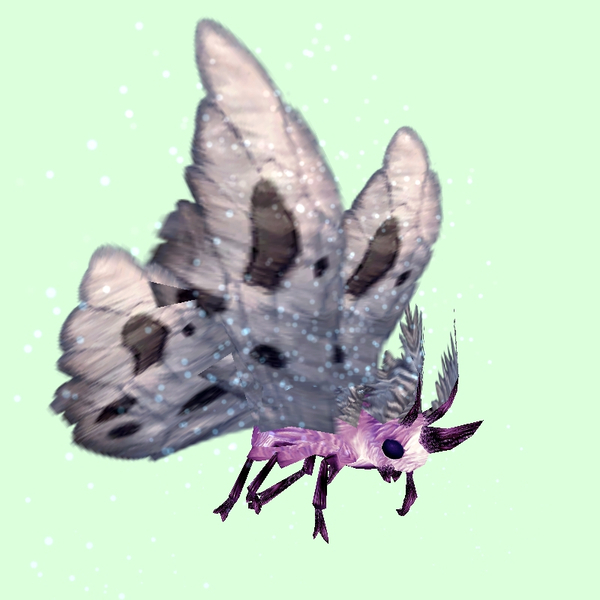 Pink Moth w/ Grey Wings
