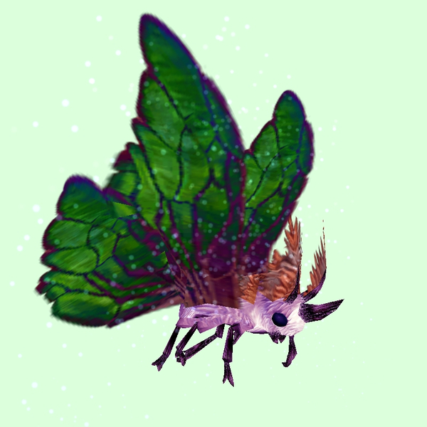Pink Moth w/ Green Wings