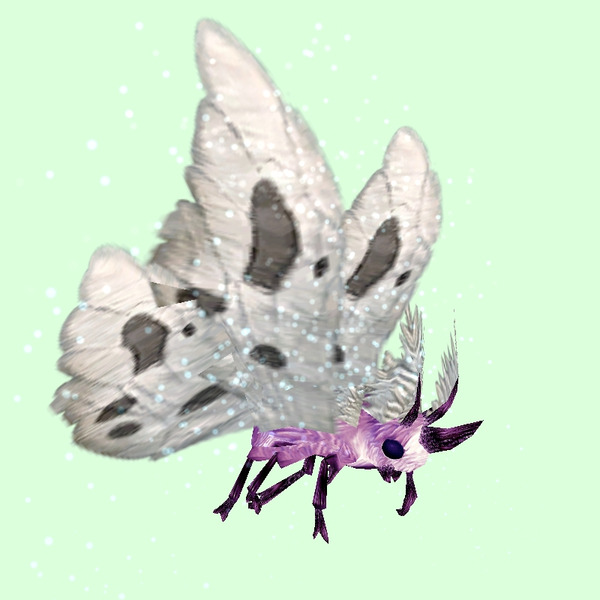Pink Moth w/ White Wings