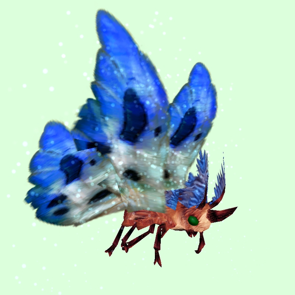 Red Moth w/ Blue & White Wings