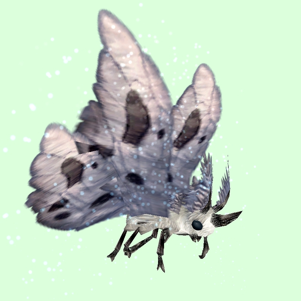 White Moth w/ Grey Wings