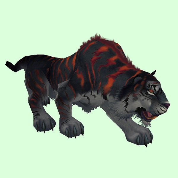 Black & Red Grand Tiger