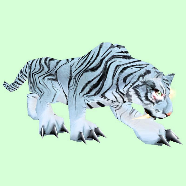 Hunched White Striped Cat