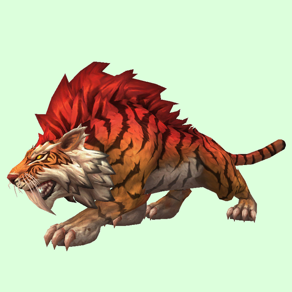 Loa Tiger Pet Look Petopia Hunter Pets In The World Of Warcraft