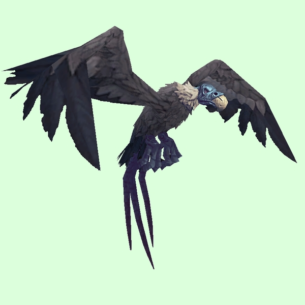Blue-Grey Vulture