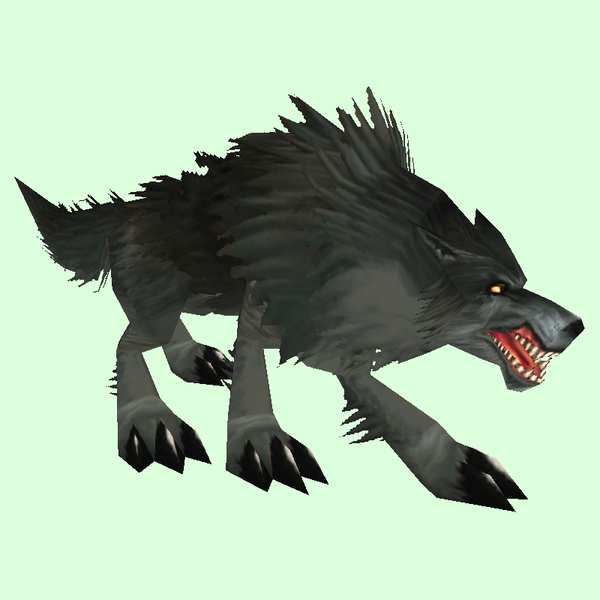 Black Wolf Pet Look Petopia Hunter Pets In The World Of Warcraft