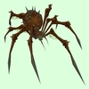 Brown Bone Spider