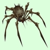 Grey Bone Spider