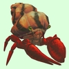 Red Hermit Crab w/ Orange Shell