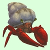 Red Hermit Crab w/ Sandy Shell