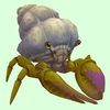 Green & Purple Hermit Crab